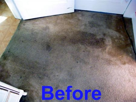 best way to clean carpet what is the best way to clean carpet carpet ideas 30875